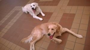 Me (Rufus) and Xander
