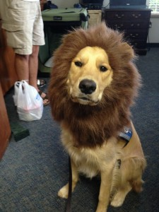"""I sure was a """"Weird Animal"""" for VBS this year!"""